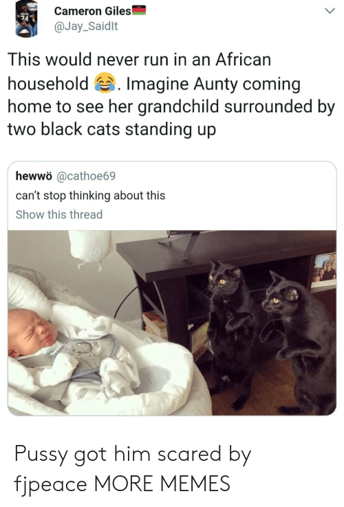 Cats, Dank, and Jay: Cameron Giles  @Jay_Saidlt  This would never run in an African  household 's. Imagine Aunty coming  home to see her grandchild surrounded by  two black cats standing up  hewwö @cathoe69  can't stop thinking about this  Show this thread Pussy got him scared by fjpeace MORE MEMES