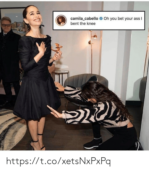 Ass, Memes, and 🤖: camila_cabello  Oh  you bet  your ass I  bent the knee https://t.co/xetsNxPxPq
