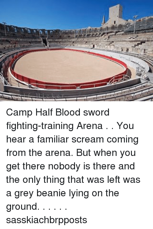 Camp Half Blood Sword Fighting-Training Arena You Hear a