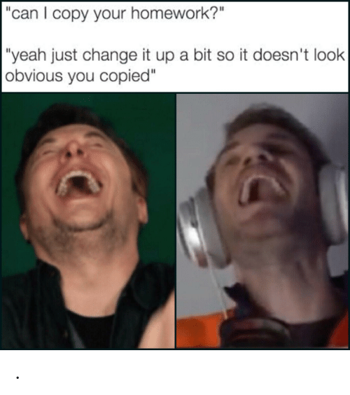 Can I Copy Your Homework? Yeah Just Change It a Bit So It