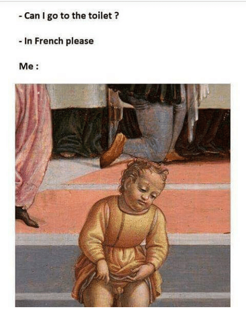 Can I Go To The Toilet In French Please Me Meme On Meme