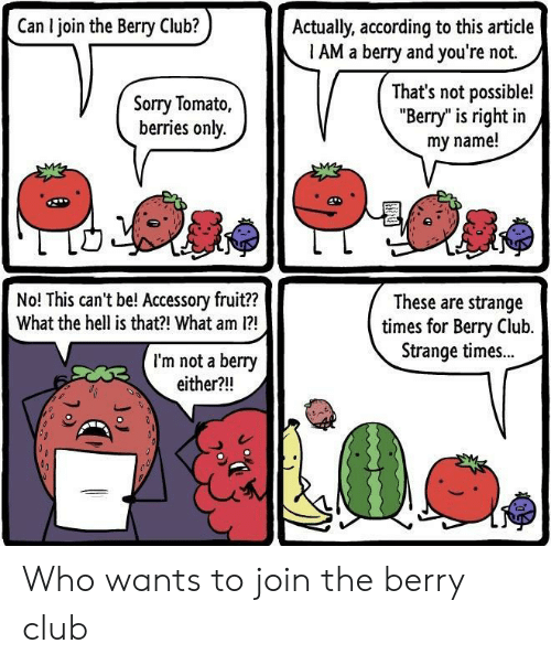 """Club, Sorry, and Hell: Can I join the Berry Club?  Actually, according to this article  1 AM a berry and you're not.  Sorry Tomato,  berries only.  That's not possible!  """"Berry"""" is right in  my name!  No! This can't be! Accessory fruit??  What the hell is that?! What am 1?  These are strange  times for Bery Club.  Strange times..  I'm not a berry  either?!! Who wants to join the berry club"""