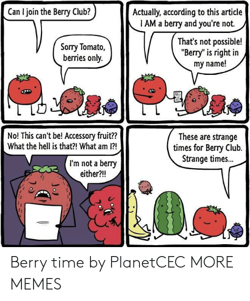 """Club, Dank, and Memes: Can I join the Berry Club?  Actually, according to this article  1 AM a berry and you're not.  Sorry Tomato,  berries only.  That's not possible!  """"Berry"""" is right in  my name!  No! This can't be! Accessory fruit??  What the hell is that?! What am 1?  These are strange  times for Bery Club.  Strange times..  I'm not a berry  either?!! Berry time by PlanetCEC MORE MEMES"""