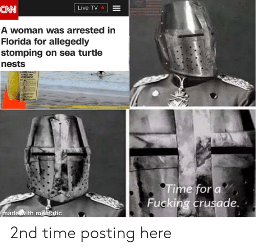 Fucking, Reddit, and Florida: CAN  Live TV  A woman was arrested in  Florida for allegedly  stomping on sea turtle  nests  GAS SUBIECT  NES AND  RSONMENT  Time for a  Fucking crusade.  made with mematic 2nd time posting here