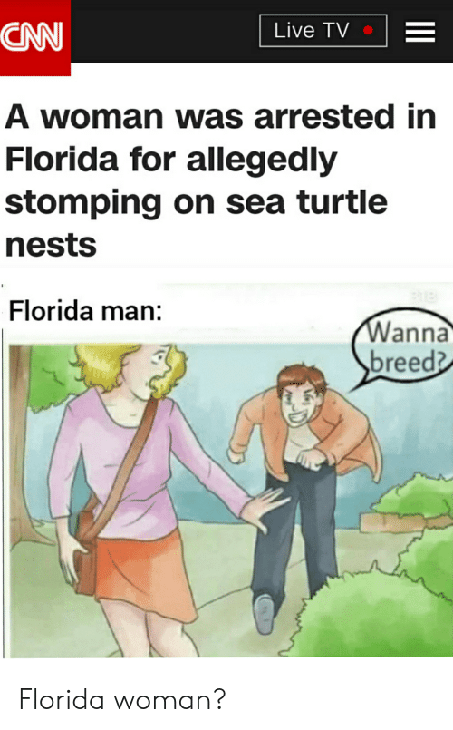 Florida Man, Florida, and Live: CAN  Live TV  A woman was arrested in  Florida for allegedly  stomping on sea turtle  nests  Florida man:  Wanna  breed? Florida woman?