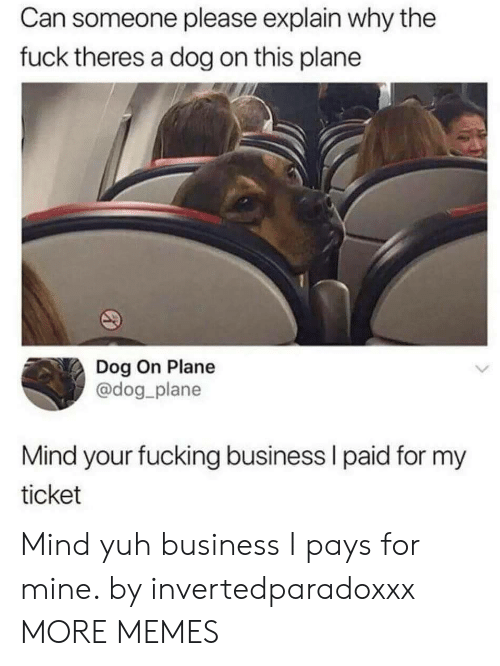 Dank, Fucking, and Memes: Can someone please explain why the  fuck theres a dog on this plane  Dog On Plane  @dog plane  Mind your fucking business l paid for my  ticket Mind yuh business I pays for mine. by invertedparadoxxx MORE MEMES
