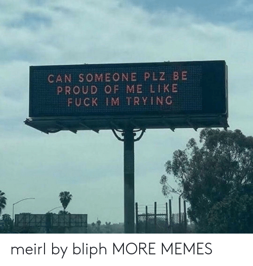 Dank, Memes, and Target: CAN SOMEONE PLZ BE  PROUD OF ME LIKE  FUCK IM TRYING meirl by bliph MORE MEMES