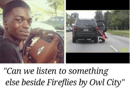 "Something Else, Owl City, and Owl: ""Can we listen to something  else beside Fireflies by Owl City"""