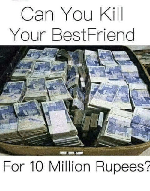What Can You Do With Your Best Friend