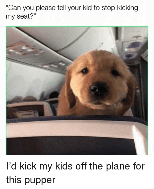 Please Stop Telling Me Your Child Is >> Can You Please Tell Your Kid To Stop Kicking My Seat I D Kick My