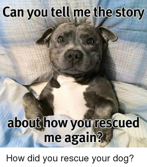 Can You Tell Me the Story About How You Rescued Me Again? How Did