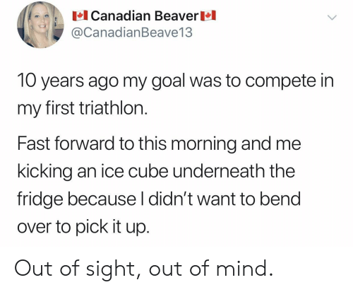 Ice Cube, Goal, and Canadian: Canadian Beaver  @CanadianBeave13  10 years ago my goal was to compete in  my first triathlon.  Fast forward to this morning and me  kicking an ice cube underneath the  fridge because l didn't want to bend  over to pick it up. Out of sight, out of mind.