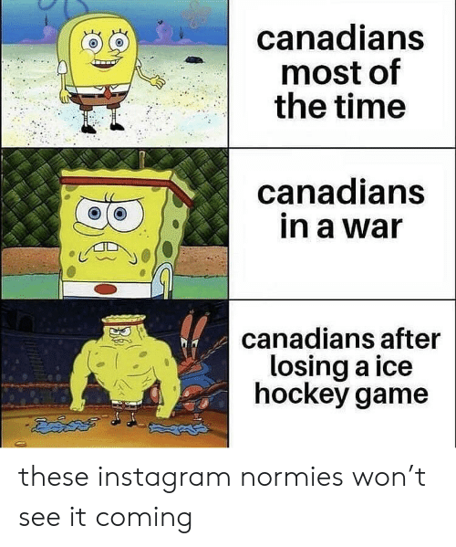 Hockey, Instagram, and Game: canadians  most of  the time  canadians  in a war  canadians after  losing a ice  hockey game these instagram normies won't see it coming