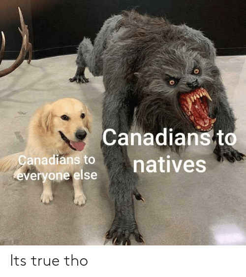 True, Everyone, and  Tho: Canadians to  natives  anadians to  everyone else Its true tho