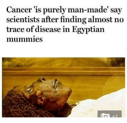 Memes, Cancer, and Egyptian: Cancer 'is purely man-made' say  scientists after finding almost no  trace of disease in Egyptian  mummies
