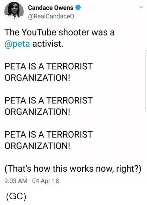 Memes, youtube.com, and Peta: Candace Owens  @RealCandaceO  The YouTube shooter was a  @peta activist.  PETA IS A TERRORIST  ORGANIZATION!  PETA IS A TERRORIST  ORGANIZATION!  PETA IS A TERRORIST  ORGANIZATION!  (That's how this works now, right?)  9:03 AM 04 Apr 18 (GC)