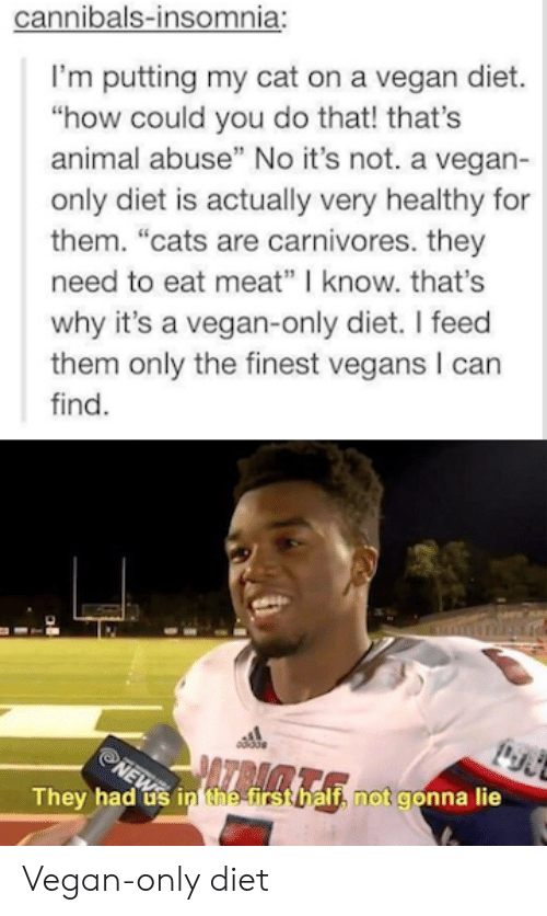 "Cats, Vegan, and Animal: cannibals-insomnia:  I'm putting my cat on a vegan diet.  ""how could you do that! that's  animal abuse"" No it's not. a vegan-  only diet is actually very healthy for  them. ""cats are carnivores. they  need to eat meat"" know. that's  why it's a vegan-only diet. I feed  them only the finest vegans I can  find.  They h  If, not gonna lie  ad usi Vegan-only diet"