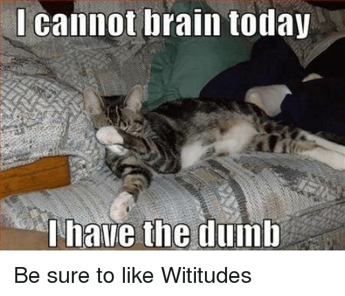 Dank, Dumb, and 🤖: cannot brain today  I have the dumb Be sure to like Wititudes