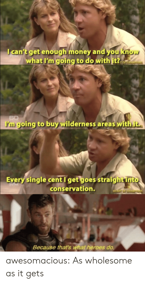 Money, Tumblr, and Blog: can't get enough money and you kriow  what I'm going to do with it?.  TOFCHAMPIONS  60  I'm going to buy wilderness areas with t  Every single cent I get goes straigh t into  conservation.  HEART OF CHAMPIONS  Because that's what heroes do. awesomacious:  As wholesome as it gets