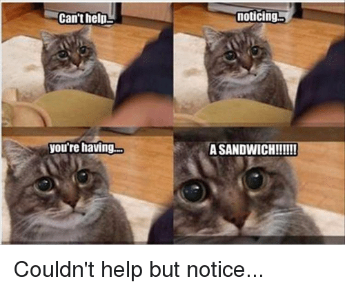 Memes, 🤖, and Sandwich: Can't help  you're having.  noticing  A SANDWICH!!!!!! Couldn't help but notice...