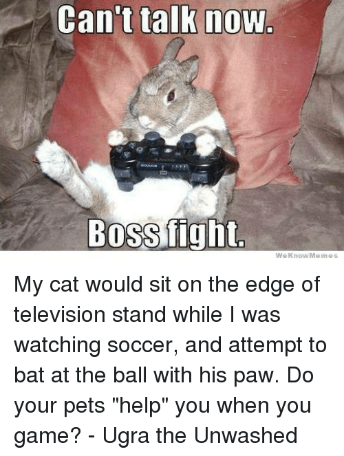 """Memes, Television, and 🤖: Can't talk now  Bossfight.  We Know Memes My cat would sit on the edge of television stand while I was watching soccer, and attempt to bat at the ball with his paw. Do your pets """"help"""" you when you game?  - Ugra the Unwashed"""