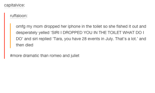 i dropped my iphone in the toilet 25 best memes about romeo and juliet romeo and juliet memes 20472