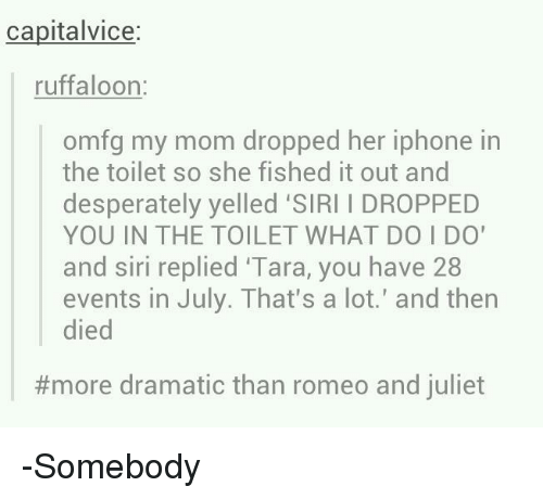 i dropped my iphone in the toilet capitalvice ruffaloon omfg my dropped iphone in 20472