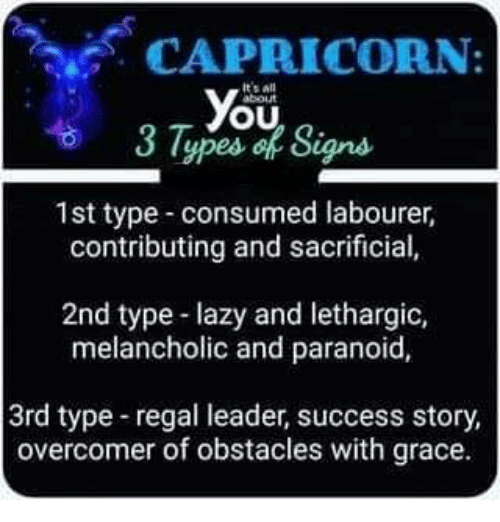 Lazy Yo And Capricorn It S All Ou Lypes Of Signs