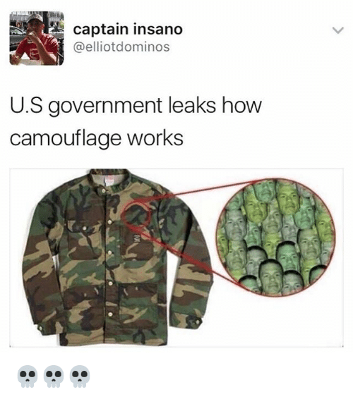 Funny, Memes, and Domino's: captain insano  @elliot dominos  U.S government leaks how  camouflage works 💀💀💀