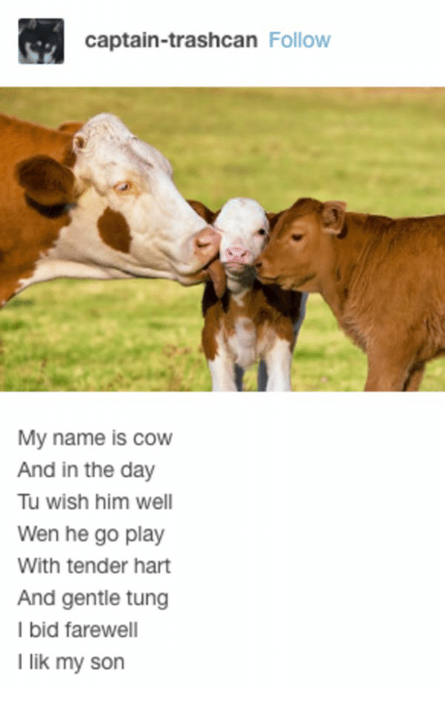 Cow, Him, and Play: captain-trashcan Follow  My name is cow  And in the day  Tu wish him well  Wen he go play  With tender hart  And gentle tung  I bid farewell  I lik my son