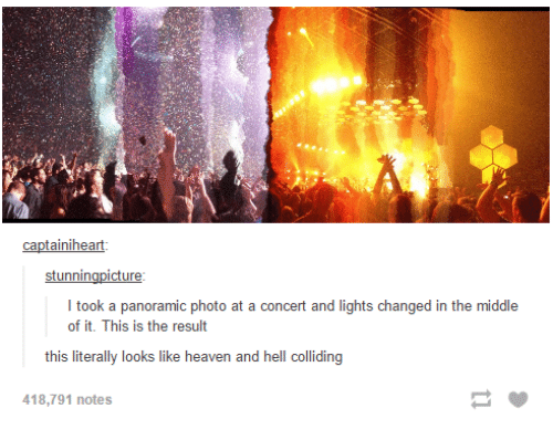 Dank, 🤖, and Photos: captainiheart  stunnin  cture  I took a panoramic photo at a concert and lights changed in the middle  of it. This is the result  this literally looks like heaven and hell colliding  418,791 notes