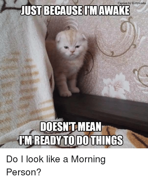 caption by kittyworks just because im awake doesnt mean im 6179206 ✅ 25 best memes about im awake im awake memes