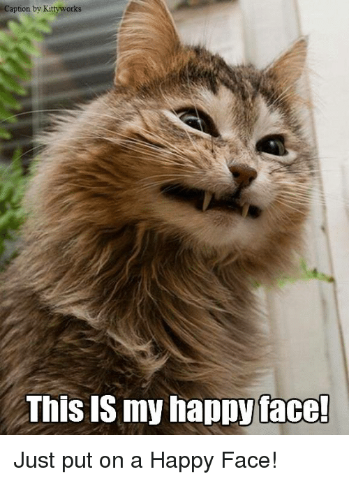 Memes, Captioned, and 🤖: Caption by Kittyworks  This IS my happy face! Just put on a Happy Face!