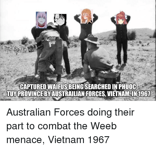 History, Vietnam, and Australian: CAPTURED WAIFUS BEING SEARCHED IN PHUOC  TUY PROVINCE BYAUSTRAILIAN FORCES, VIETNAM IN1967
