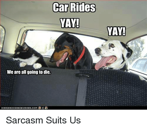 Car Rides Yay We Are All Going To Die Yay Sarcasm Suits Us Cars