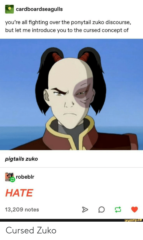 Zuko, Fighting, and All: cardboardseagulls  you're all fighting over the ponytail zuko discourse,  but let me introduce you to the cursed concept of  pigtails zuko  robeblr  HATE  13,209 notes  ifunny.co Cursed Zuko