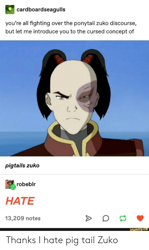 Pig, Zuko, and Fighting: cardboardseagulls  you're all fighting over the ponytail zuko discourse,  but let me introduce you to the cursed concept of  pigtails zuko  robeblr  HATE  13,209 notes  ifunny.co Thanks I hate pig tail Zuko