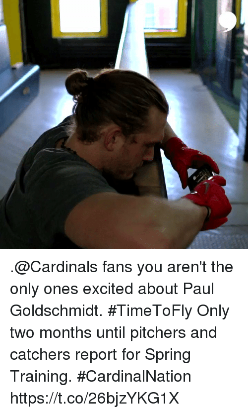 Memes, Cardinals, and Spring: .@Cardinals fans you aren't the only ones excited about Paul Goldschmidt. #TimeToFly  Only two months until pitchers and catchers report for Spring Training. #CardinalNation https://t.co/26bjzYKG1X