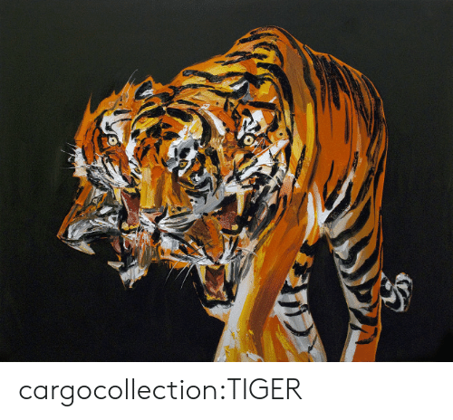 Tumblr, Blog, and Http: cargocollection:TIGER