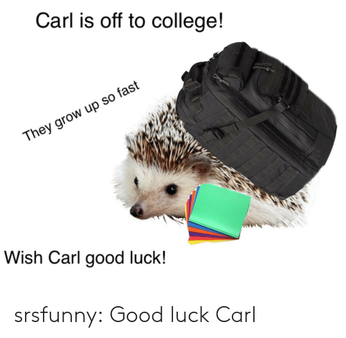 College, Tumblr, and Blog: Carl is off to college!  They grow up so fast  Wish Carl good luck! srsfunny:  Good luck Carl