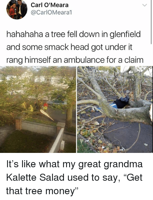 """Grandma, Head, and Memes: Carl O'Meara  @CarlOMeara1  hahahaha a tree fell down in glenfield  and some smack head got under it  rang himself an ambulance for a claim It's like what my great grandma Kalette Salad used to say, """"Get that tree money"""""""