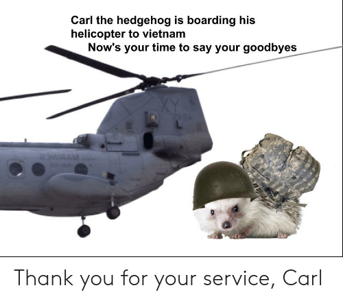 Thank You, Hedgehog, and Time: Carl the hedgehog is boarding his  helicopter to vietnam  Now's your time to say your goodbyes Thank you for your service, Carl