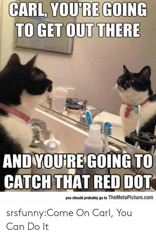 Tumblr, Blog, and Http: CARL YOU'RE GOING  TO GET OUT THERE  ANDYOURE GOINGTO  CATCH THAT RED DOT  you should probably go to TheMetaPicture.com srsfunny:Come On Carl, You Can Do It