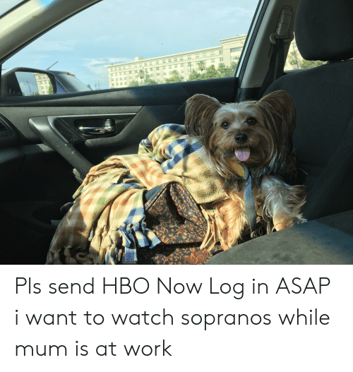 Hbo, Work, and Watch: Carlex as  DOT 457  OBJECTS MIRBOR Pls send HBO Now Log in ASAP i want to watch sopranos while mum is at work