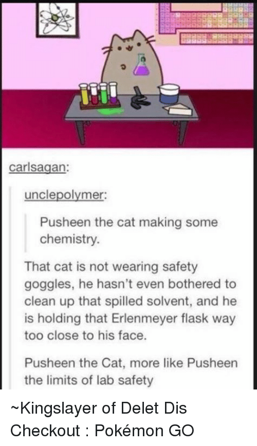 Pusheen The Limits Of Lab Safety