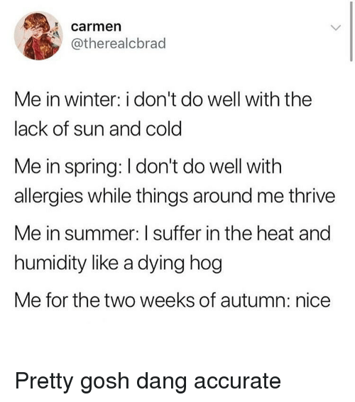 Funny, Winter, and Summer: carmen  @therealcbrad  Me in winter: i don't do well with the  lack of sun and cold  Me in spring: I don't do well with  allergies while things around me thrive  Me in summer: I suffer in the heat and  humidity like a dying hog  Me for the two weeks of autumn: nice Pretty gosh dang accurate