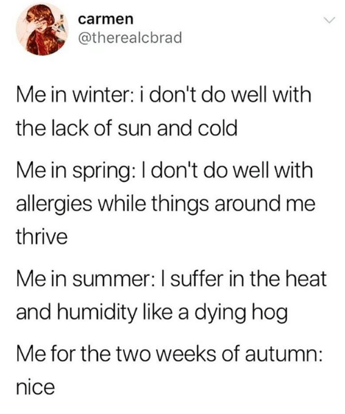 Winter, Summer, and Heat: carmen  @therealcbrad  Me in winter: i don't do well with  the lack of sun and cold  Me in spring: I don't do well with  allergies while things around me  thrive  Me in summer: I suffer in the heat  and humidity like a dying hog  Me for the two weeks of autumn:  nice