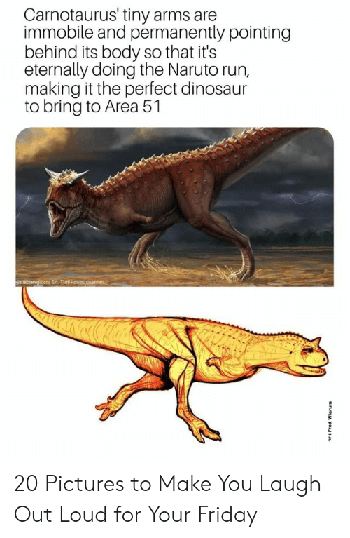 Dinosaur, Friday, and Naruto: Carnotaurus' tiny arms are  immobile and permanently pointing  behind its body so that it's  eternally doing the Naruto run,  making it the perfect dinosaur  to bring to Area 51  SLIscianigiochi Sri Tuti dinit riservat  unJoM pou: 20 Pictures to Make You Laugh Out Loud for Your Friday