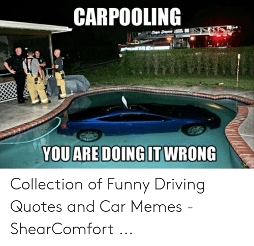 CARPOOLING Collection of Funny Driving Quotes and Car Memes ...