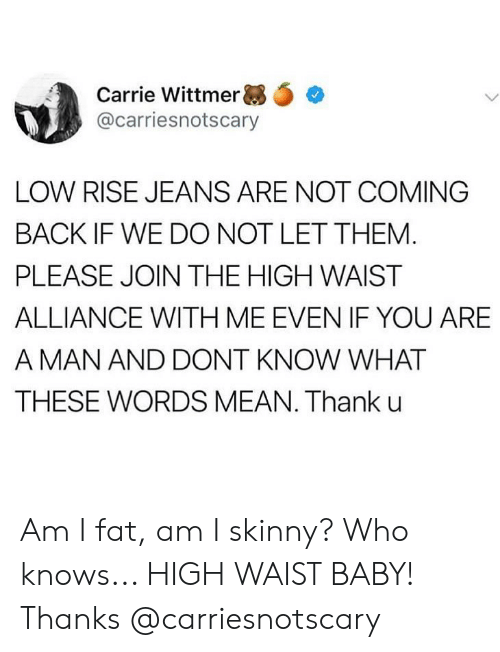 Memes, Skinny, and Mean: Carrie Wittmer ,.  @carriesnotscary  LOW RISE JEANS ARE NOT COMING  BACK IF WE DO NOT LET THEM  PLEASE JOIN THE HIGH WAIST  ALLIANCE WITH ME EVEN IF YOU ARE  A MAN AND DONT KNOW WHAT  THESE WORDS MEAN. Thank u Am I fat, am I skinny? Who knows... HIGH WAIST BABY! Thanks @carriesnotscary